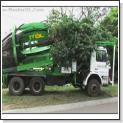 دانلود کلیپ موبایل تکنولوژی جدید نقل مکان درخت ها